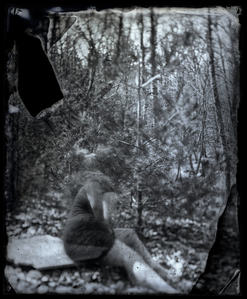 wet-plate collodion tintype, 2012